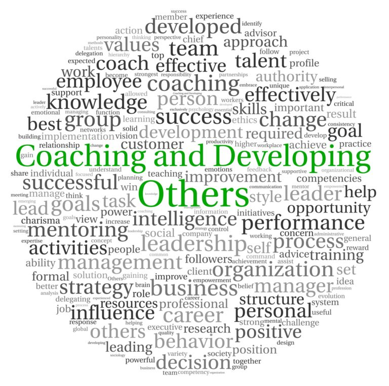 Executive coaching for CEOs